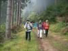 Pfalzwanderung am 14.10.2012 - Auf dem Rückweg nach Hochspeyer