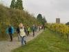 Herbstwanderung am 26.10.2014 Wachenheim - Eckkopf