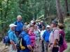 TVL-Wanderer am 25.09.2016 in der Pfalz
