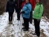 Januarwanderung am 29.01.2017 im Auwald