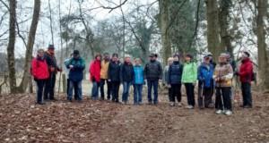 TVL-Januarwanderer im Auwald