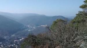 Blick ins Heidenbrunner Tal