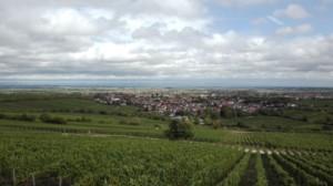 Die Weinpfalz bei Deidesheim